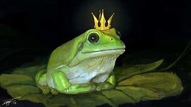 frogbeingaking.jpg