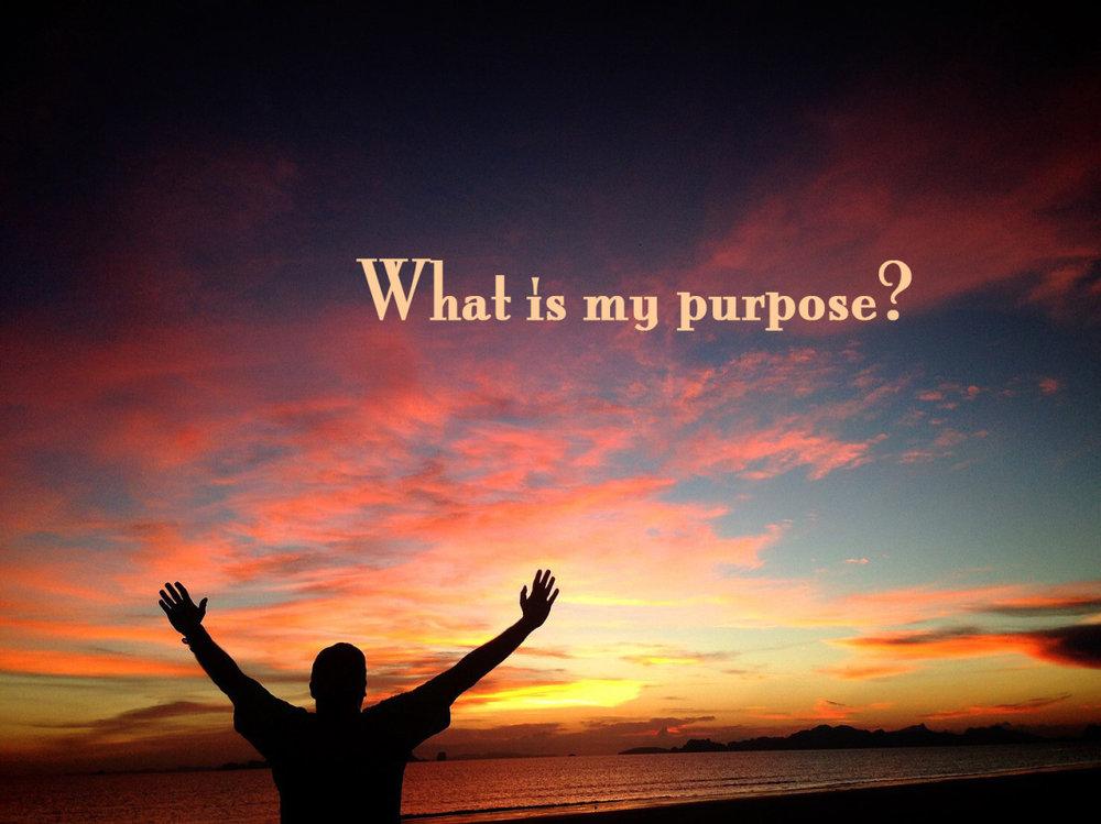 purpose1.jpg