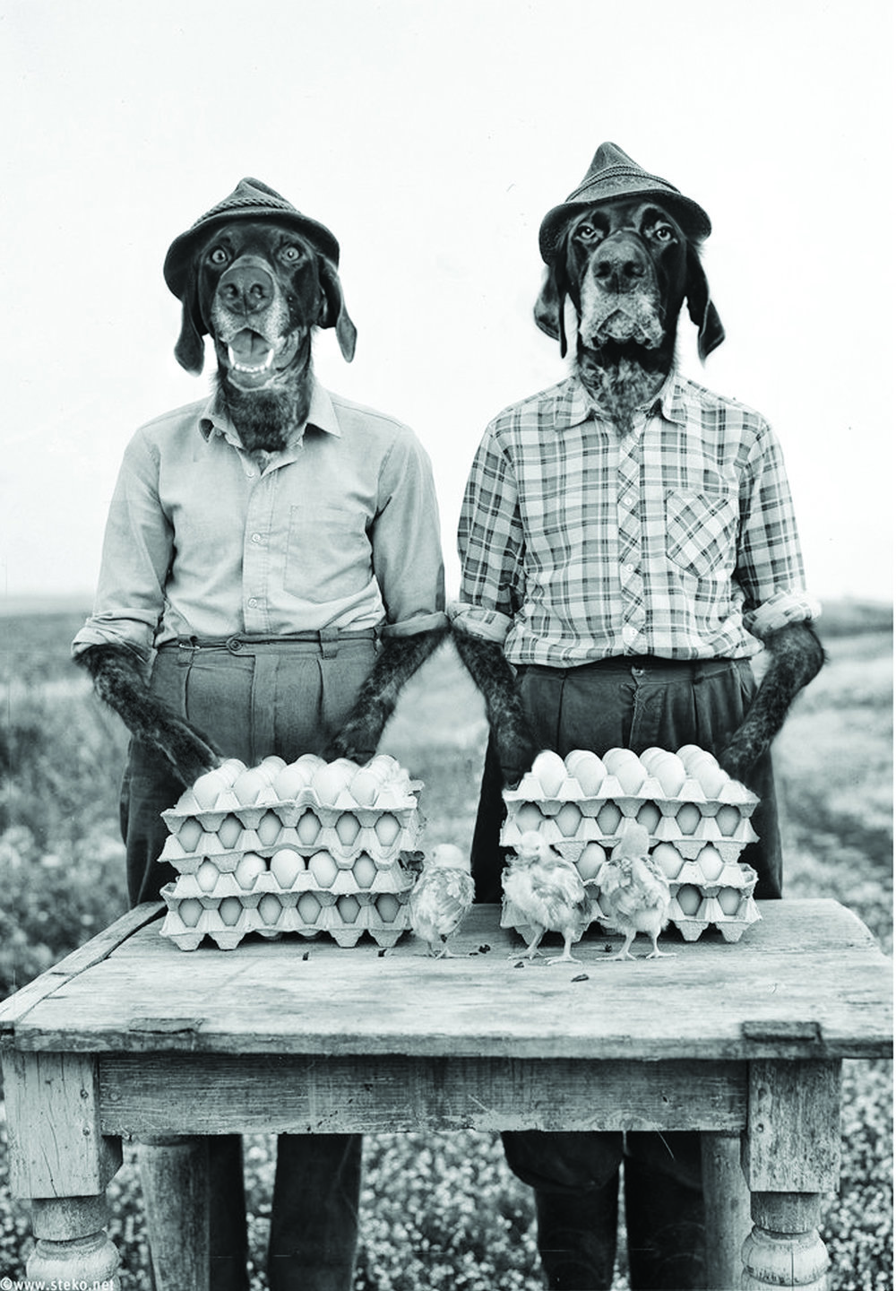 Gordon and Lyle Pointerson. Dust Bowl era chicken farmers. Gordon foresaw the disasters coming from the unnatural growing practices of the times. Lyle on the other hand mistakenly thought Gordon was referring to a 'dust ball' 1928 .