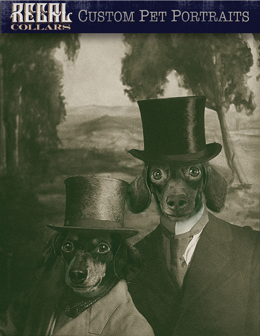 Send us a photo of your pet, and we'll dress them up!