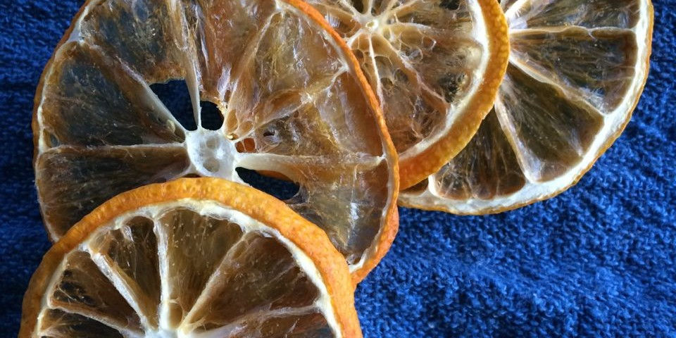 caching in on lemon season | a raisin & a porpoise