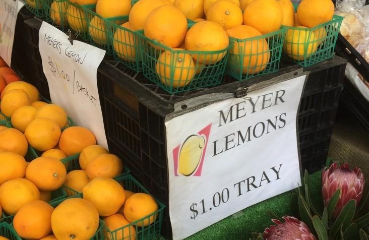 lemony how-to | a raisin & a porpoise