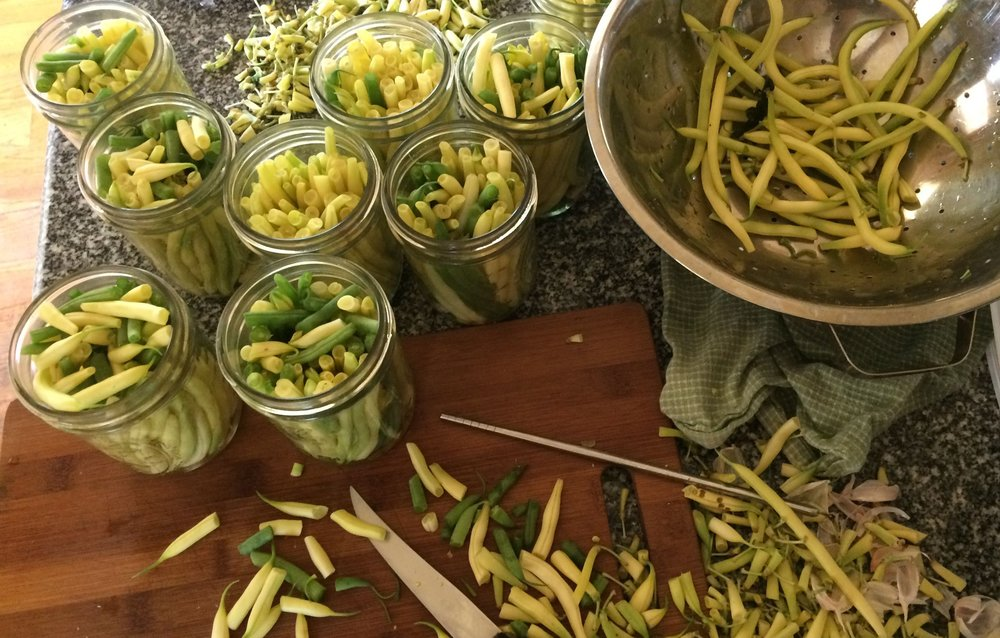 packing tips | pickled beans and life in the woods, from a raisin & a porpoise