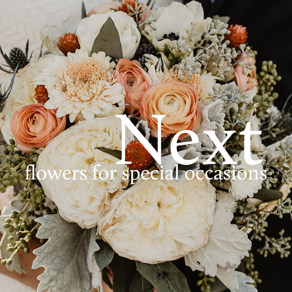 Next flowers for special occasions izmirmasajfo