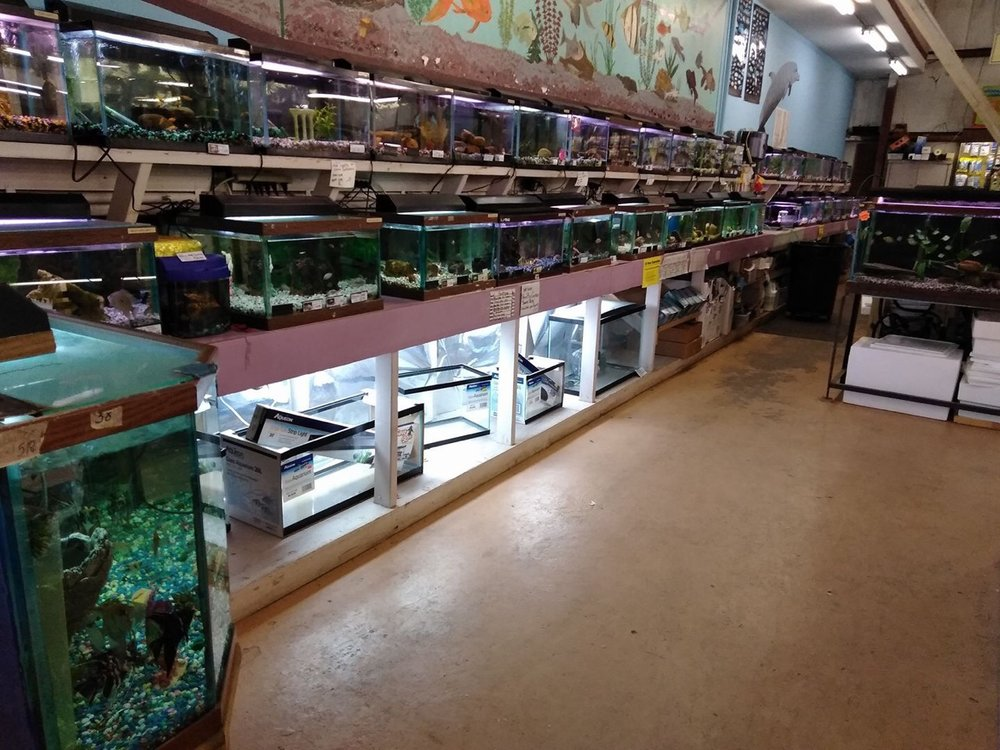Fish Department.jpg