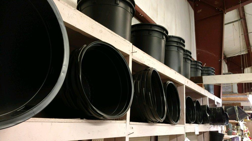Black Plastic Pots.jpg