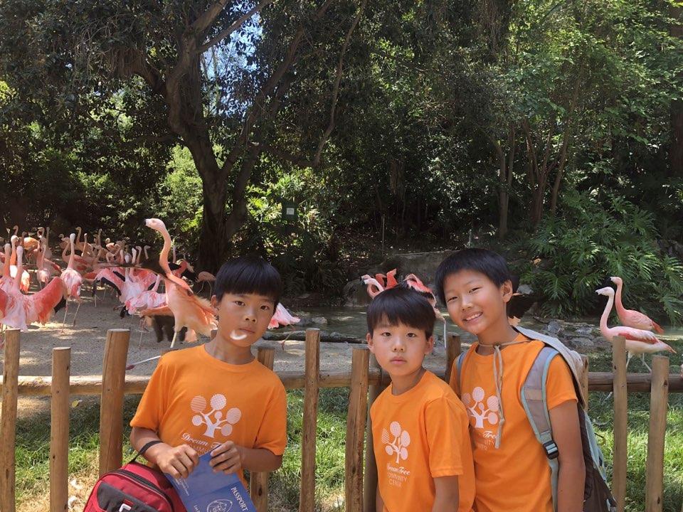 KakaoTalk_Photo_2018-06-18-15-27-16-14.jpeg