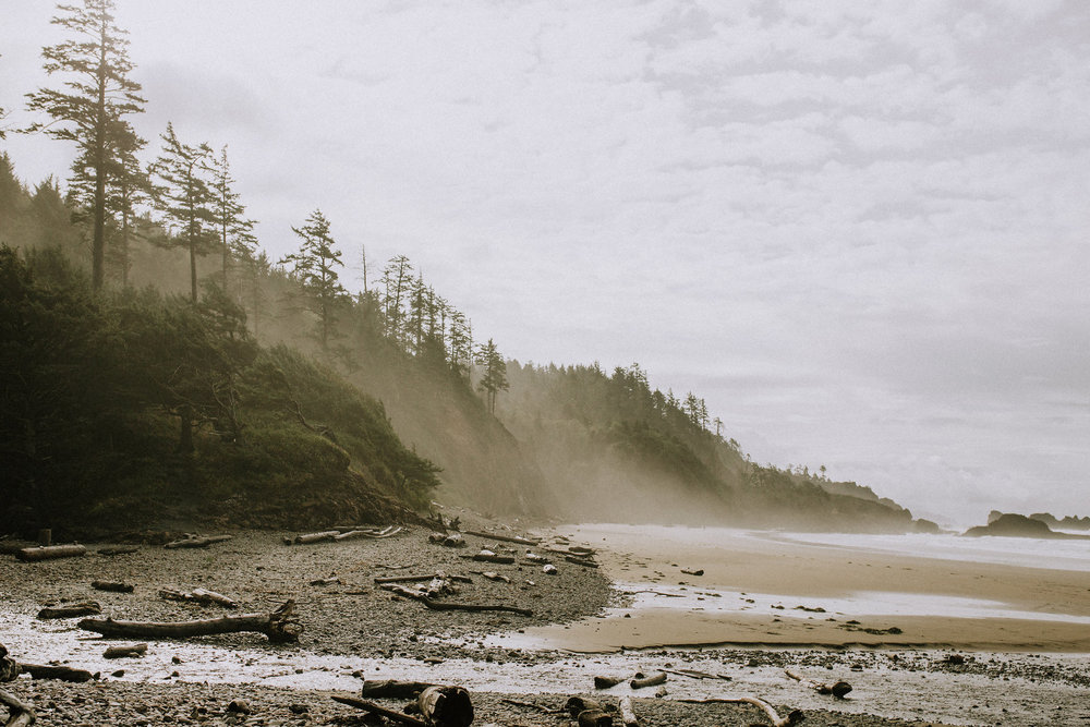 Lightroom Presets Post-Production Tools The Photosynthesis Project Hannah Elise