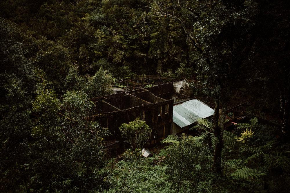 tribephotoco-field-trip-madeira-island-ami-robertson-8.jpg