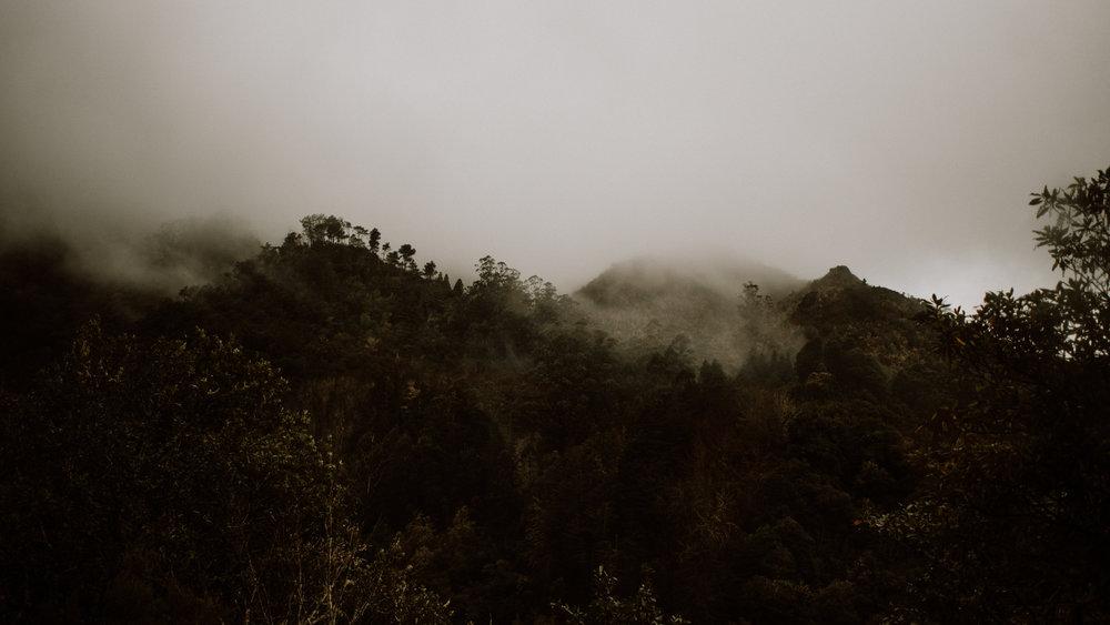 tribephotoco-field-trip-madeira-island-ami-robertson-7.jpg