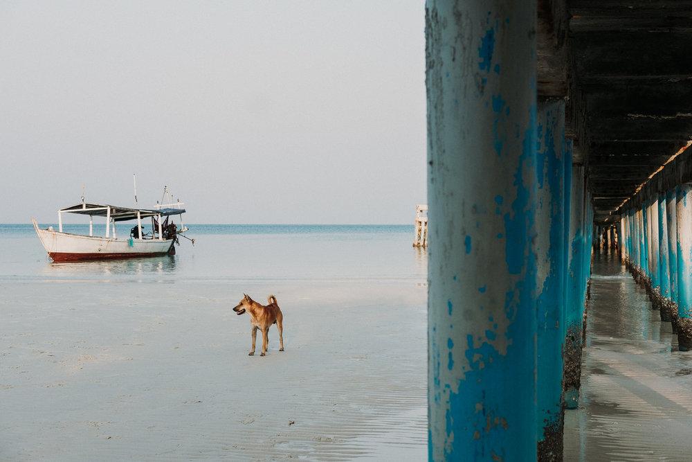 field-trip-discovering-cambodia-radka-horvath-12.jpg