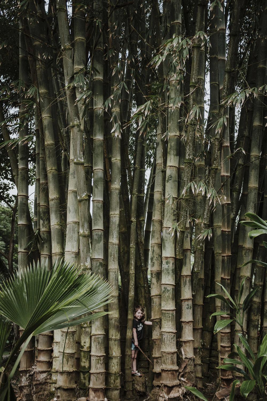 field-trip-Unraveling-treasures-Maui-Karmen-Meyer-01.jpg