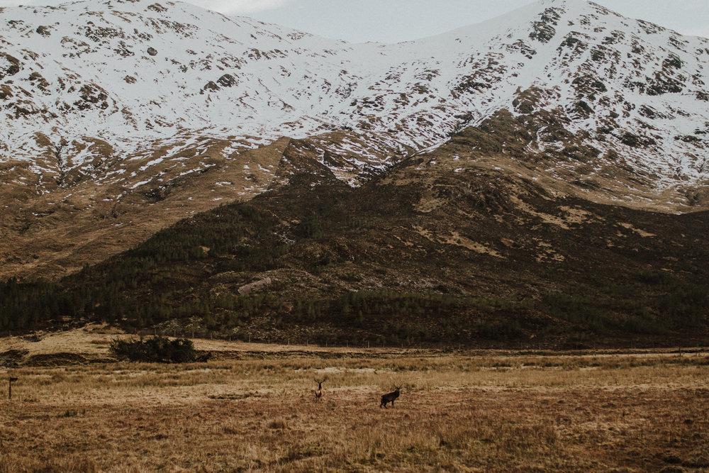 field-trip-creating-memories-scotland-hs-lovestories-109.jpg