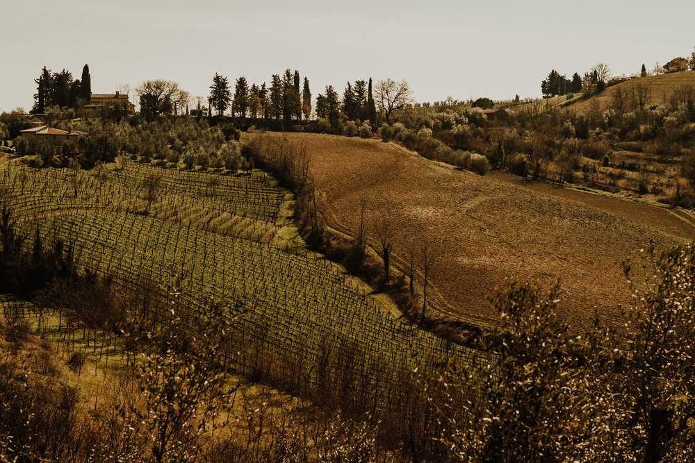 field-trip-italy-roberto-pecino-145.jpg