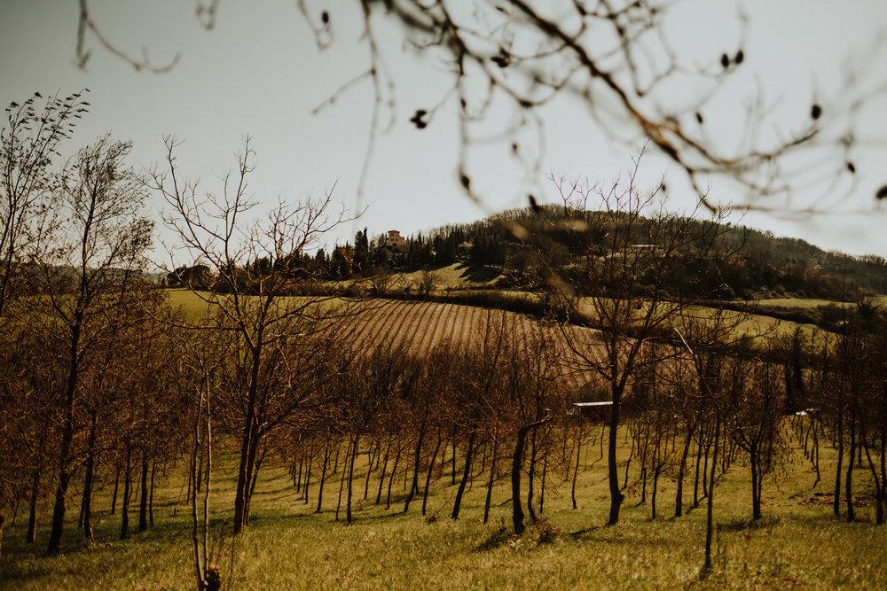field-trip-italy-roberto-pecino-136.jpg