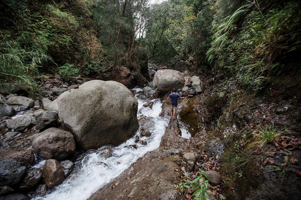 field-trip-hiking-maui-micah-emily-21.jpg