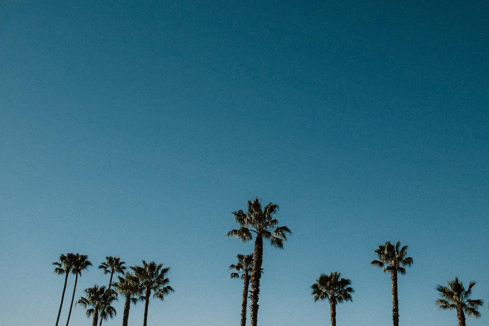 field-trip-exploring-california-coast-curries-11.jpg