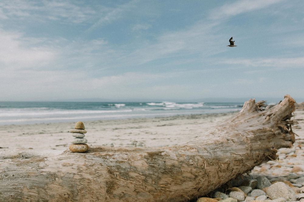 field-trip-monterrey-carmel-california-erin-aasland-18.jpg