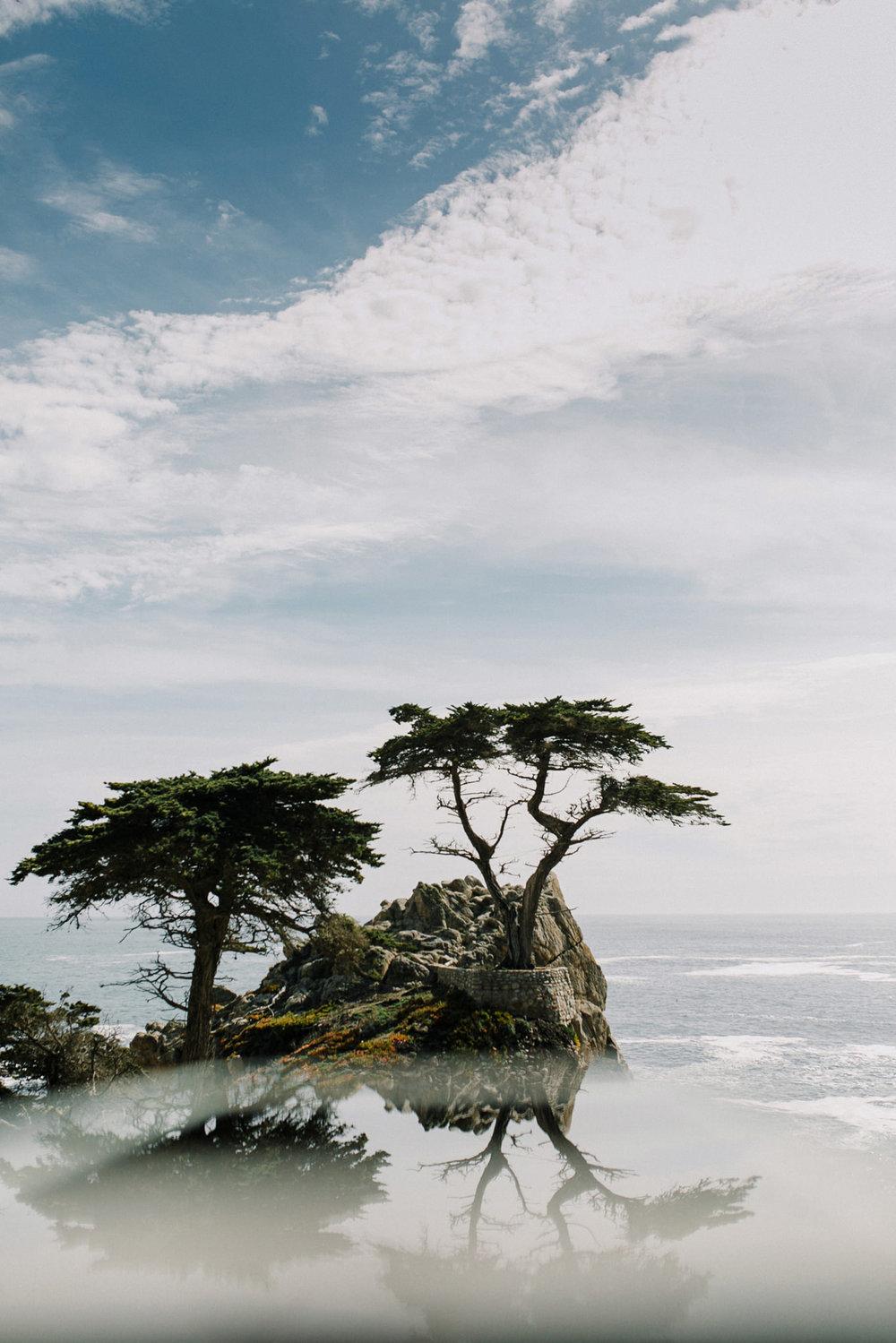 field-trip-monterrey-carmel-california-erin-aasland-25.jpg