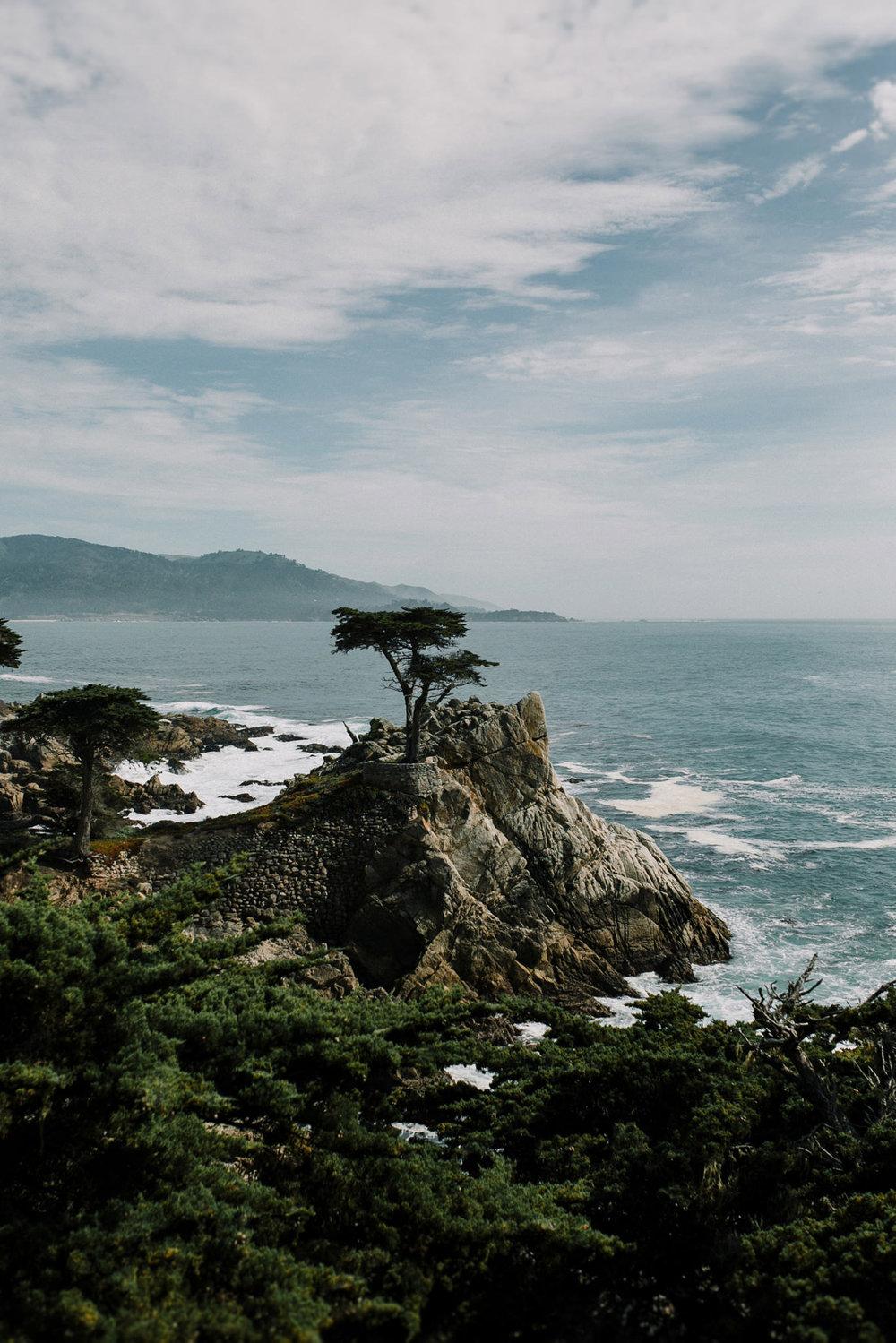 field-trip-monterrey-carmel-california-erin-aasland-26.jpg