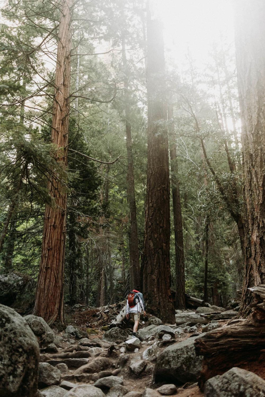 field-trip-exploring-west-coast-wisteria-wells-10.jpg