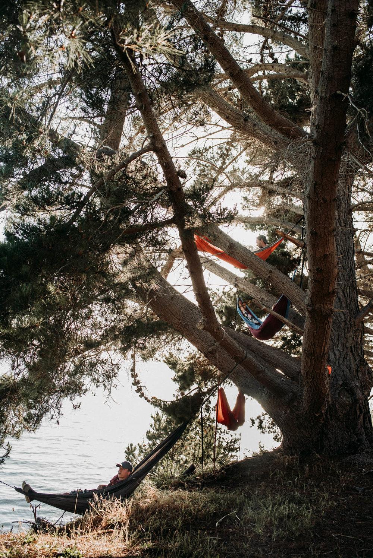 field-trip-exploring-west-coast-wisteria-wells-22.jpg