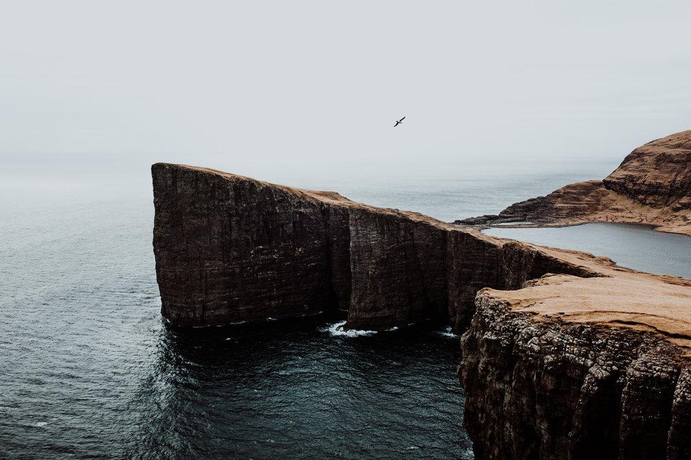 field-trip-faroe-islands-liam-rimmington-1.jpg