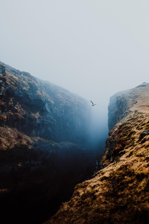 field-trip-faroe-islands-liam-rimmington-13.jpg