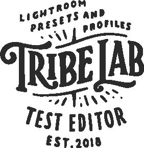 Lab Editor Logo BLK.png