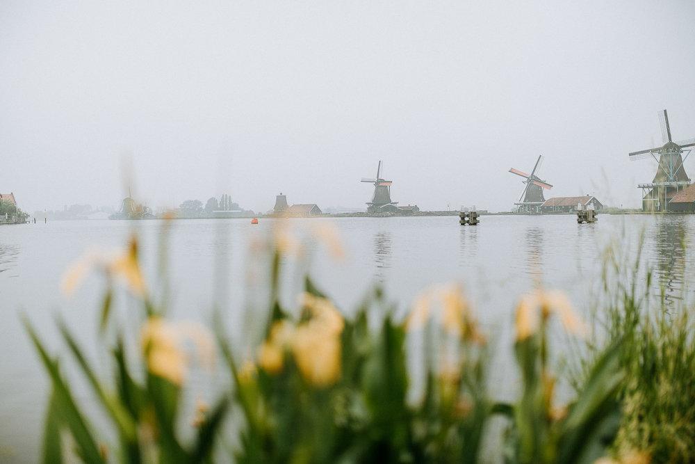 field-trip-bahrain-amsterdam-jennifer-joiner-19.jpg