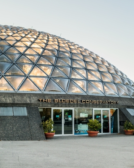 The Bloedel Conservatory at Queen Elizabeth Park
