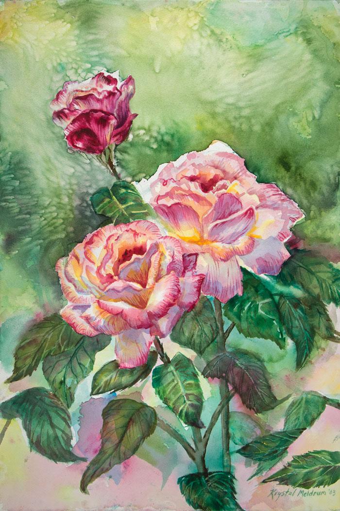 Grandma's-Roses_2316.jpg