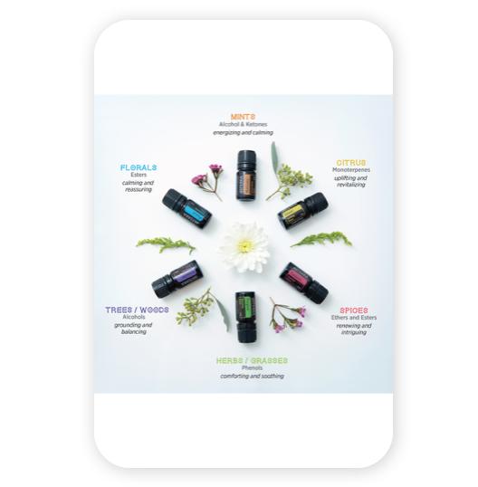 doterra essentil oils emotional aromatherapy infographic