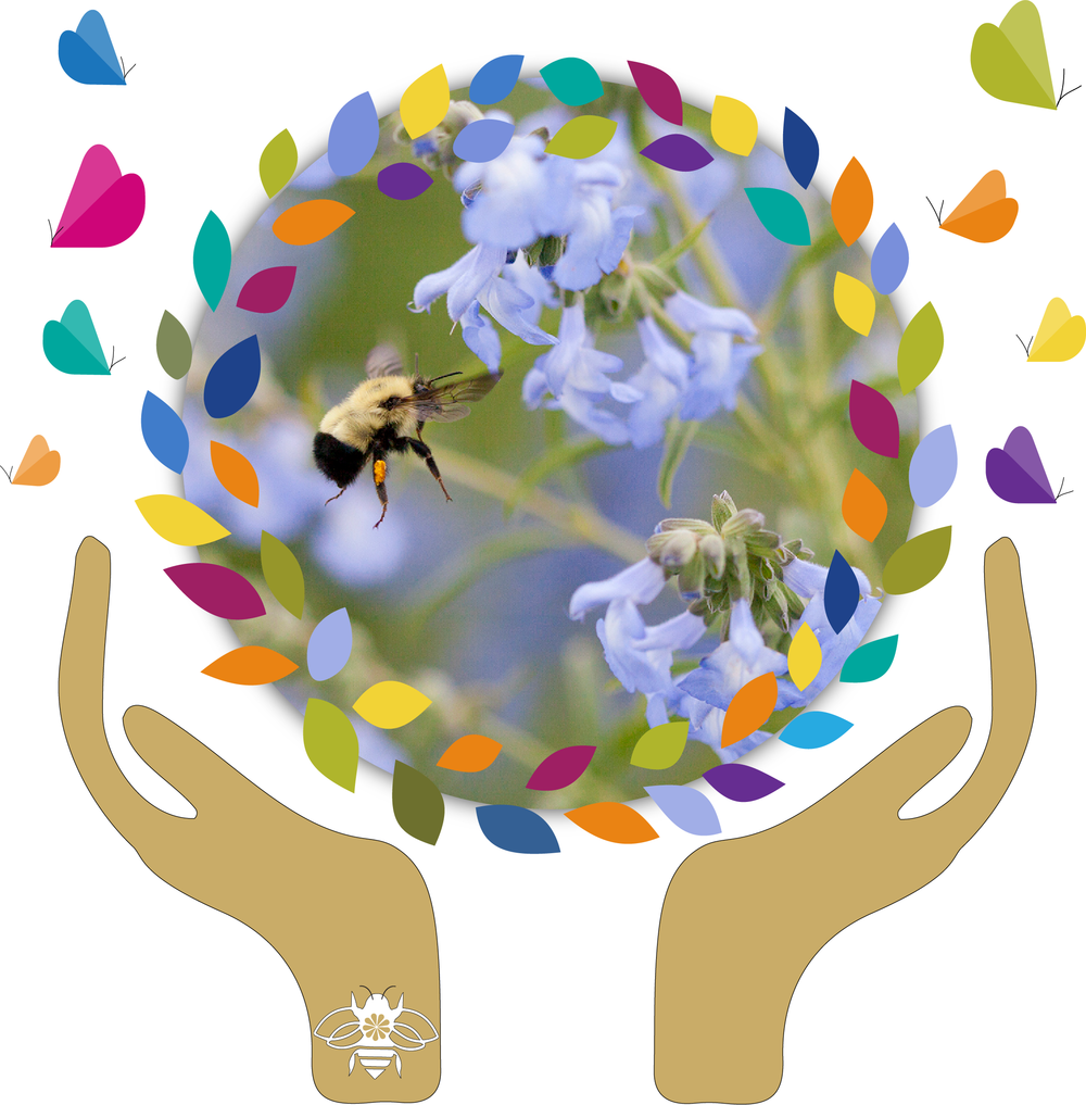 CELEBRATE! -            It's NATIONAL POLLINATOR WEEK June 18-24