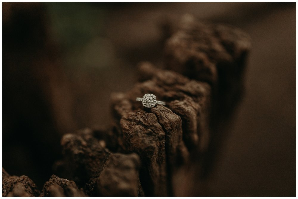 Katie Marie Photography | Hamilton Ontario Wedding Photographer | Hamilton Engagement Session | HamOnt_0049.jpg