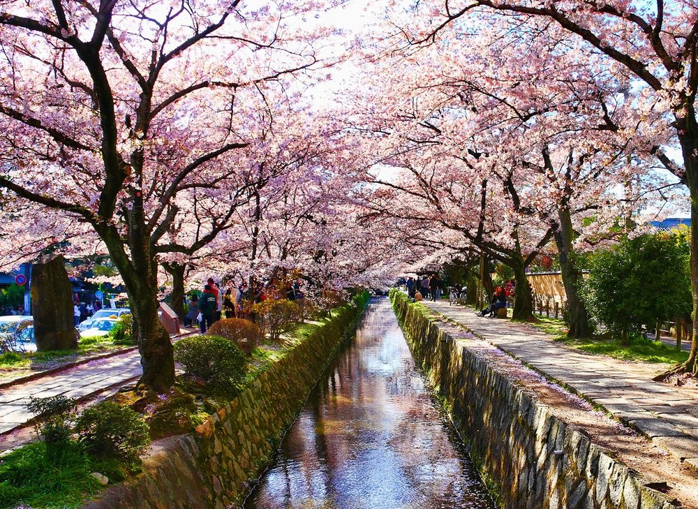 Kyoto-Philosophers-Path-Walk-1.jpg