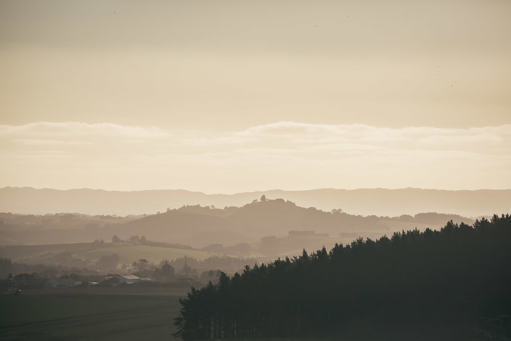 Pokekohe hills