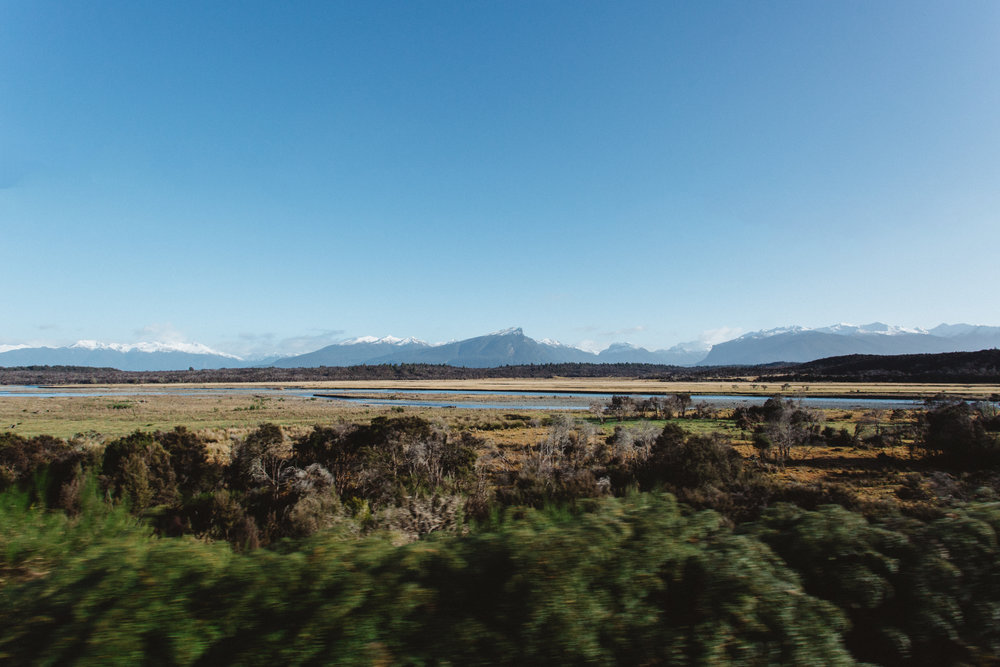Road to Milford Sounds