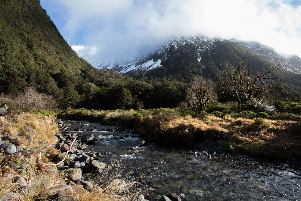 Cleddau River
