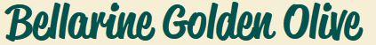 Goldin olive.JPG