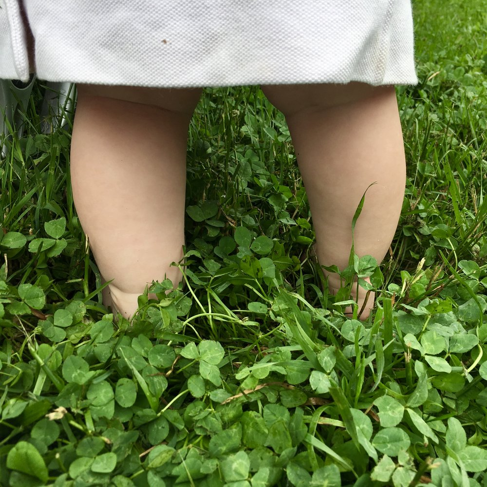 Image: bare baby legs standing in a field of grass and clover.