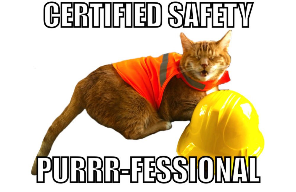 Safety Purr-fesional