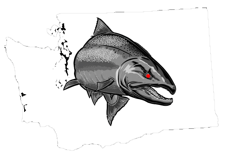 Washington State Fishing Guides