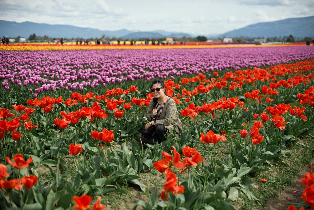 Tulips-13.jpg