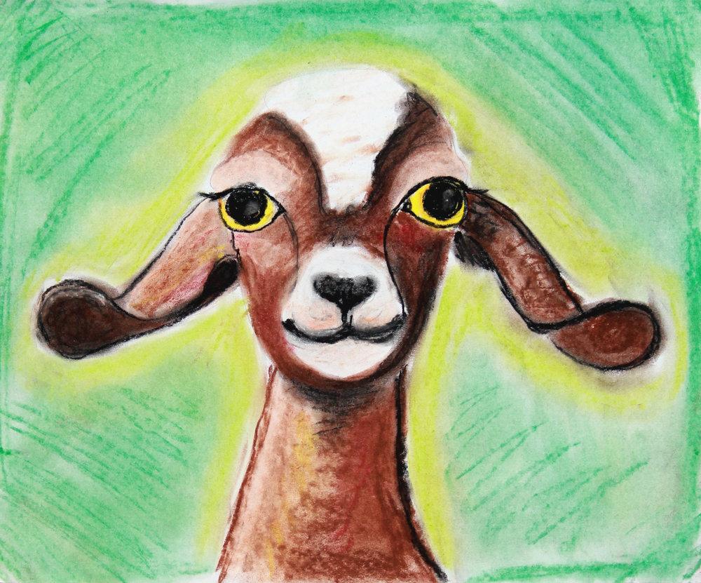 Brynn-Goat.jpg
