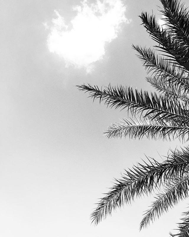 #bafq #yazd #iran #brandidentitydesign #branding #logodesign #logo #graphicdesign #visualart #designer #graphicdesigner #visualartist #typography #typo #typographic #photography #visualidentity #visualidentityproduction #minimal #minimalistic #bw #bwphotography #photography #digitalphotography #minimal #minimalism #art #belgium #kineticart #typeface #museum