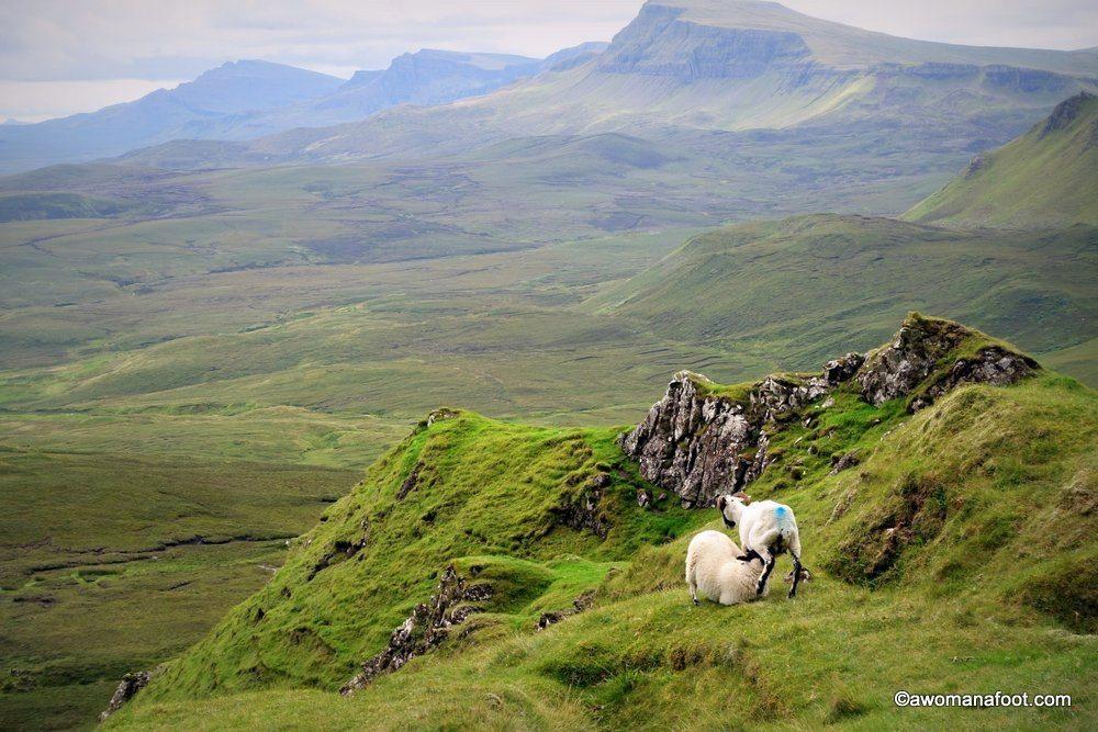 Scotland-Skye-26.jpg