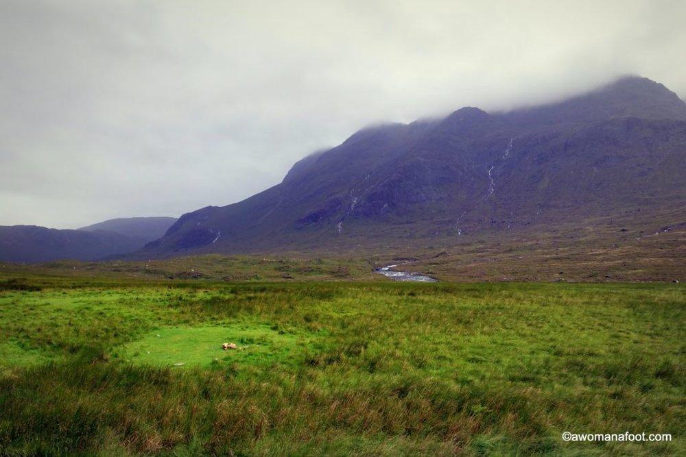 Scotland-Skye-43.jpg