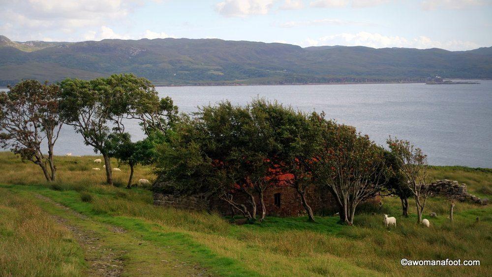 Scotland-Skye-55.jpg