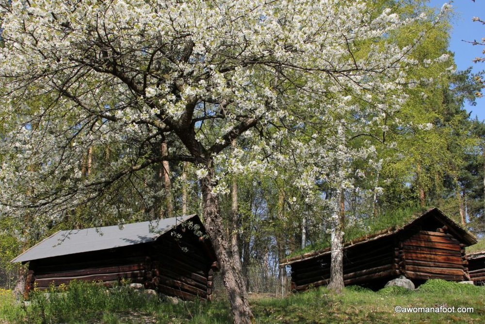 Norsk Folkemuseum - a picturesque open-air museum you must see when visiting Oslo! Learn about the land's history and diverse traditions. What to do in Oslo | Must-see in Oslo | City Travel | Best European destinations | #Oslo #Museum #Travel #Norway #Folklore #History awomanafoot.com